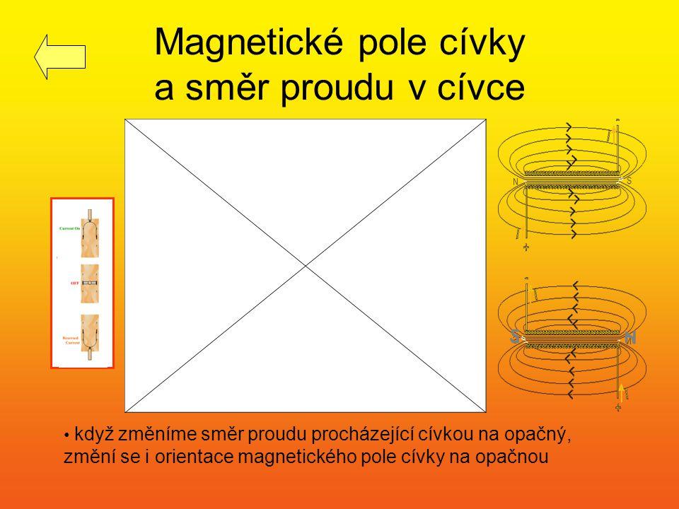Homogenní magnetické pole mezi dvěma póly podkovovitého magnetu a uvnitř cívky (v jeho střední části) jsou magnetické indukční čáry navzájem rovnoběžné a stejně vzdálené - je zde tedy homogenní magnetické pole