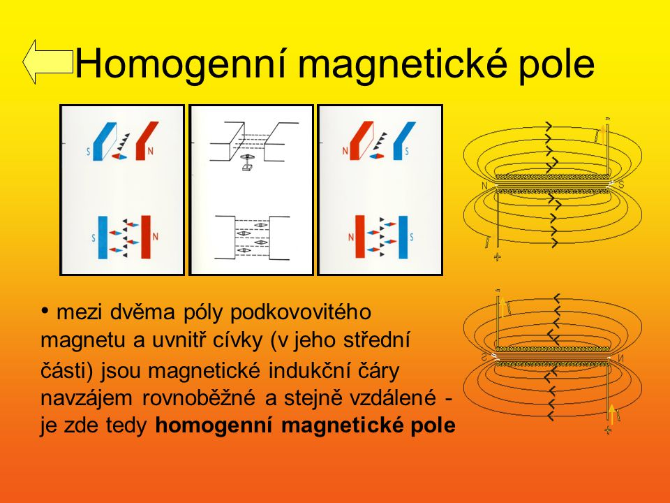 Homogenní magnetické pole mezi dvěma póly podkovovitého magnetu a uvnitř cívky (v jeho střední části) jsou magnetické indukční čáry navzájem rovnoběžn
