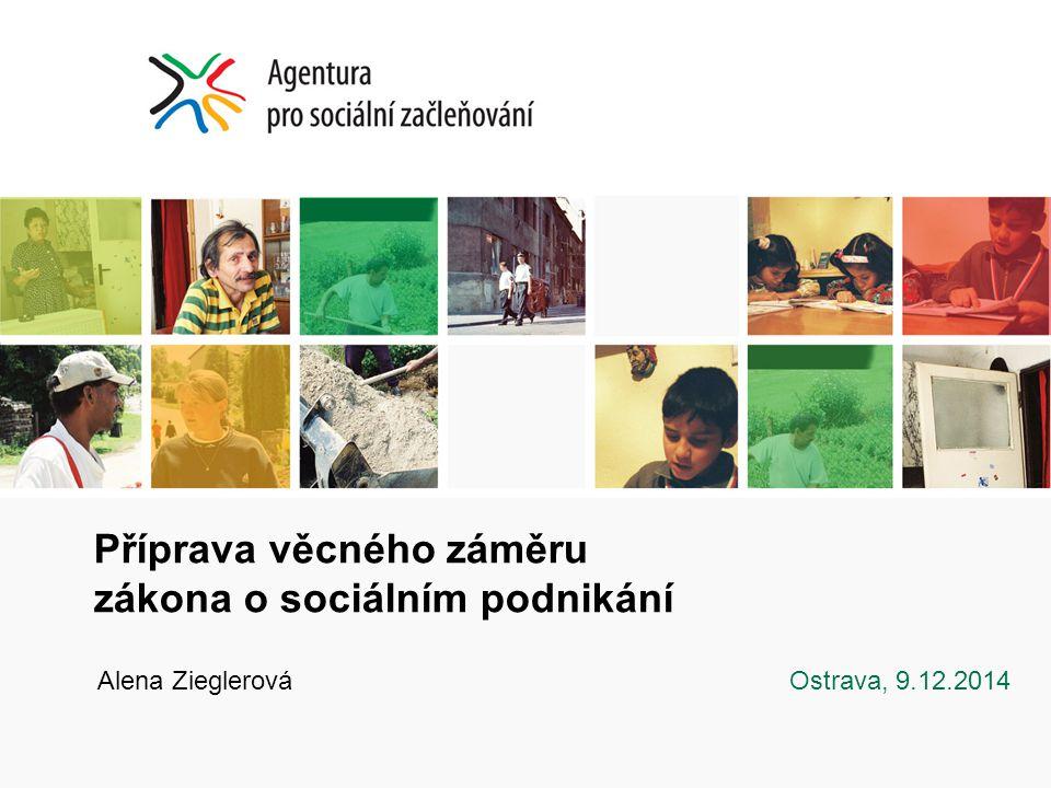 Příprava věcného záměru zákona o sociálním podnikání Alena Zieglerová Ostrava, 9.12.2014