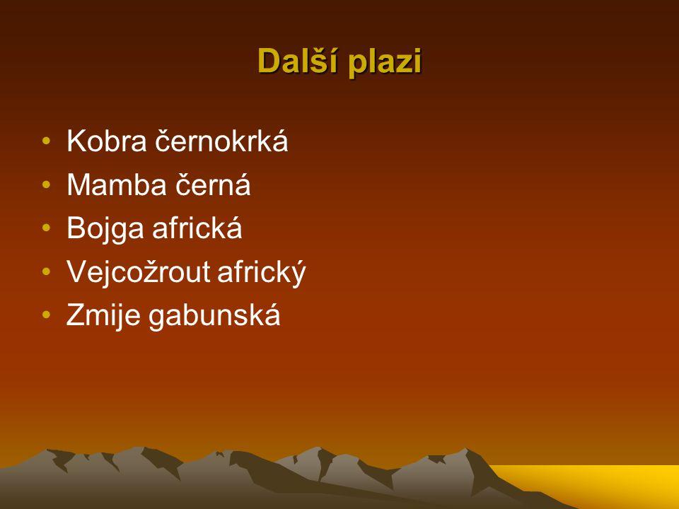 Další plazi Kobra černokrká Mamba černá Bojga africká Vejcožrout africký Zmije gabunská