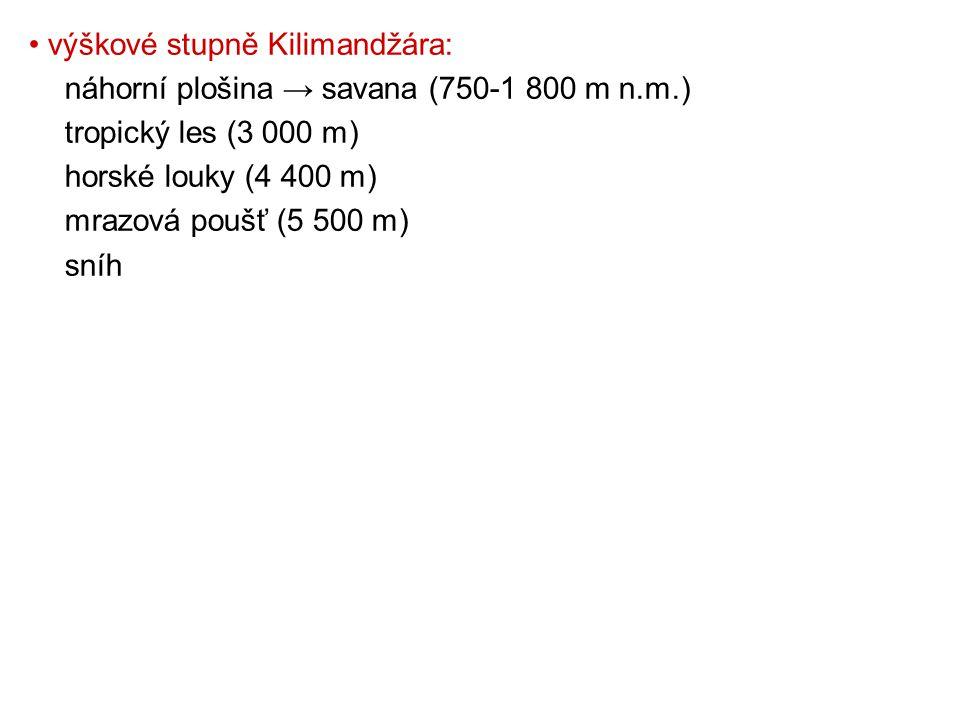 výškové stupně Kilimandžára: náhorní plošina → savana (750-1 800 m n.m.) tropický les (3 000 m) horské louky (4 400 m) mrazová poušť (5 500 m) sníh
