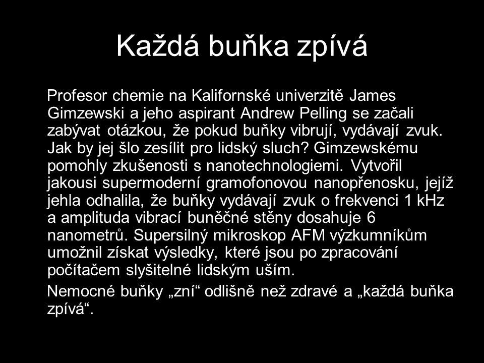Každá buňka zpívá Profesor chemie na Kalifornské univerzitě James Gimzewski a jeho aspirant Andrew Pelling se začali zabývat otázkou, že pokud buňky v