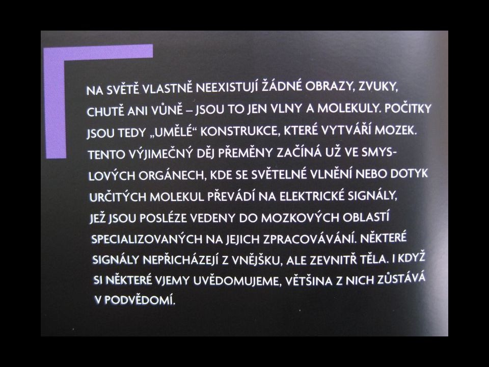 Kymatika (hlas)