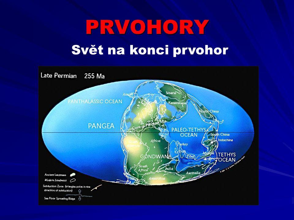 PRVOHORY V průběhu prvohor došlo díky pohybům litosférických desek ke spojení všech kontinentů v jeden celek superkontinent PANGEA