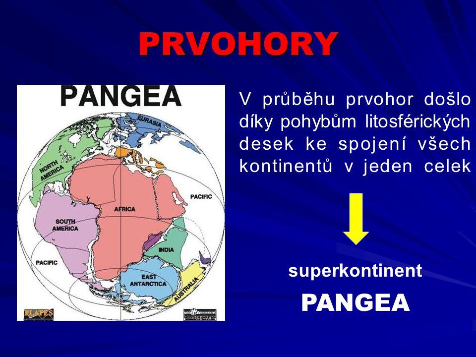 PRVOHORY ČR je světově významnou oblastí výskytu prvohorních hornin Zastoupeny jsou horniny ze všech period prvohor Prvohory v České republice .