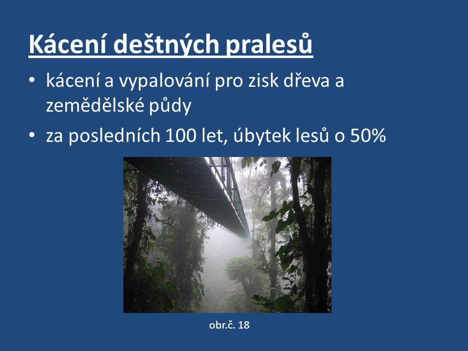 Kácení deštných pralesů kácení a vypalování pro zisk dřeva a zemědělské půdy za posledních 100 let, úbytek lesů o 50% obr.č.