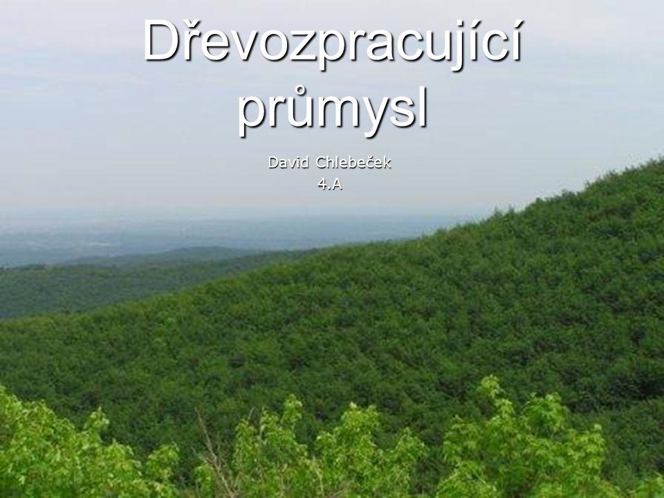 Dřevozpracující průmysl David Chlebeček 4.A