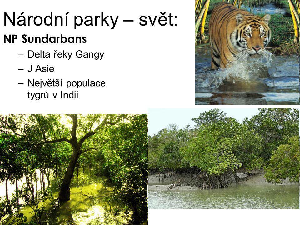 Národní parky – svět: NP Sundarbans –Delta řeky Gangy –J Asie –Největší populace tygrů v Indii