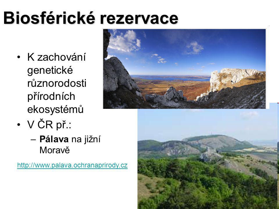 Biosférické rezervace K zachování genetické různorodosti přírodních ekosystémů V ČR př.: –Pálava na jižní Moravě http://www.palava.ochranaprirody.cz