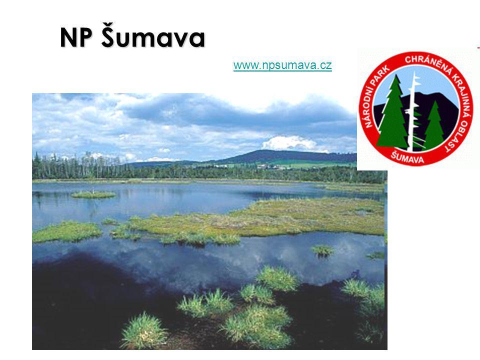 NP Šumava www.npsumava.cz