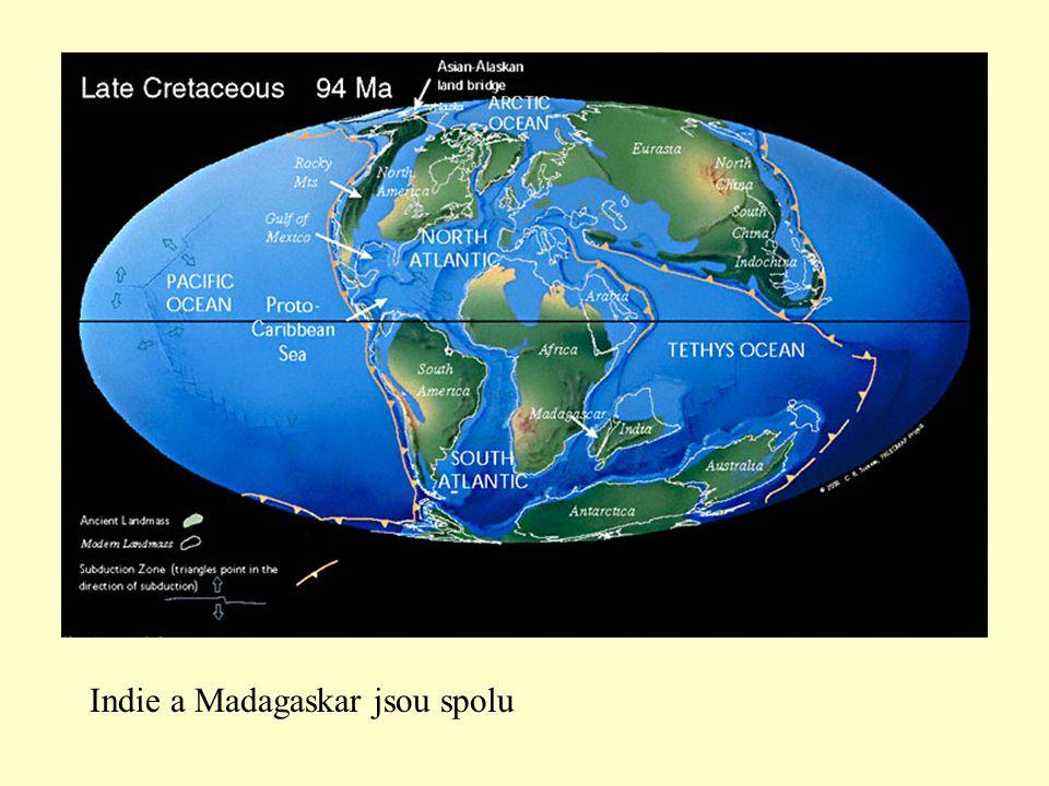 Indie a Madagaskar jsou spolu