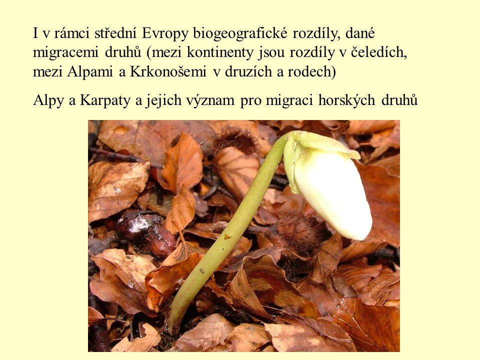 I v rámci střední Evropy biogeografické rozdíly, dané migracemi druhů (mezi kontinenty jsou rozdíly v čeledích, mezi Alpami a Krkonošemi v druzích a rodech) Alpy a Karpaty a jejich význam pro migraci horských druhů