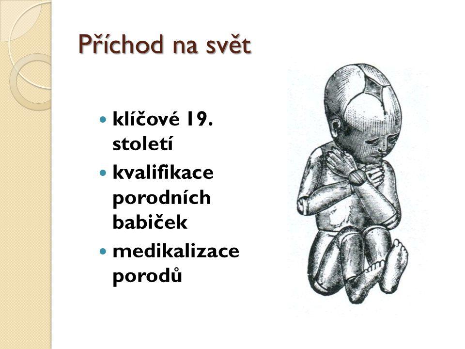 Příchod na svět klíčové 19. století kvalifikace porodních babiček medikalizace porodů
