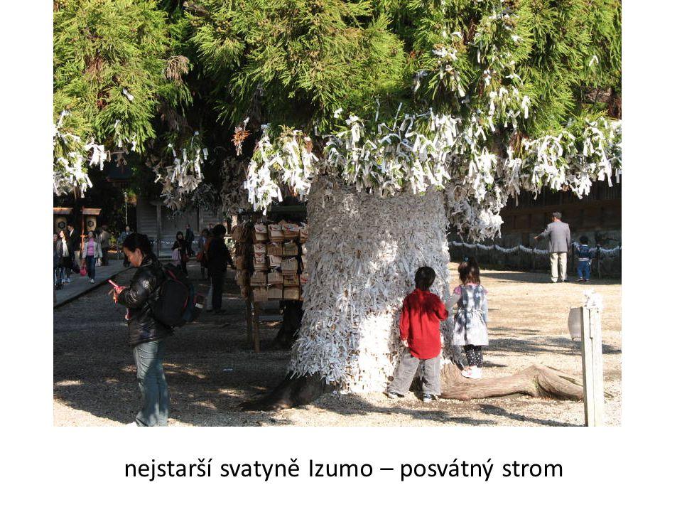 nejstarší svatyně Izumo – posvátný strom