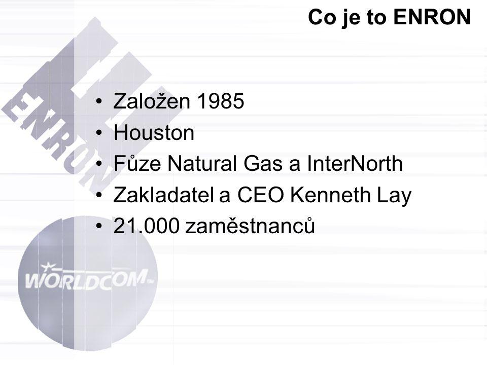 Co je to ENRON Ropa a zemní plyn (Oil & LNG Transportation) Výrobky z ropy (Petrochemicals) Umělé hmoty (Plastics) Energie (Power) Investice (Principal Investments) Papír a buničina (Pulp & Paper) Rizikový management (Risk Management) Nákladní doprava (Shipping / Freight) Ocel (Steel) Informační kanály (Streaming Media) Pitná a odpadní voda (Water & Wastewater) Enron Online – internetový portál určený k prodeji energetických zdrojů