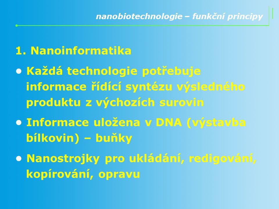 1. Nanoinformatika Každá technologie potřebuje informace řídící syntézu výsledného produktu z výchozích surovin Informace uložena v DNA (výstavba bílk