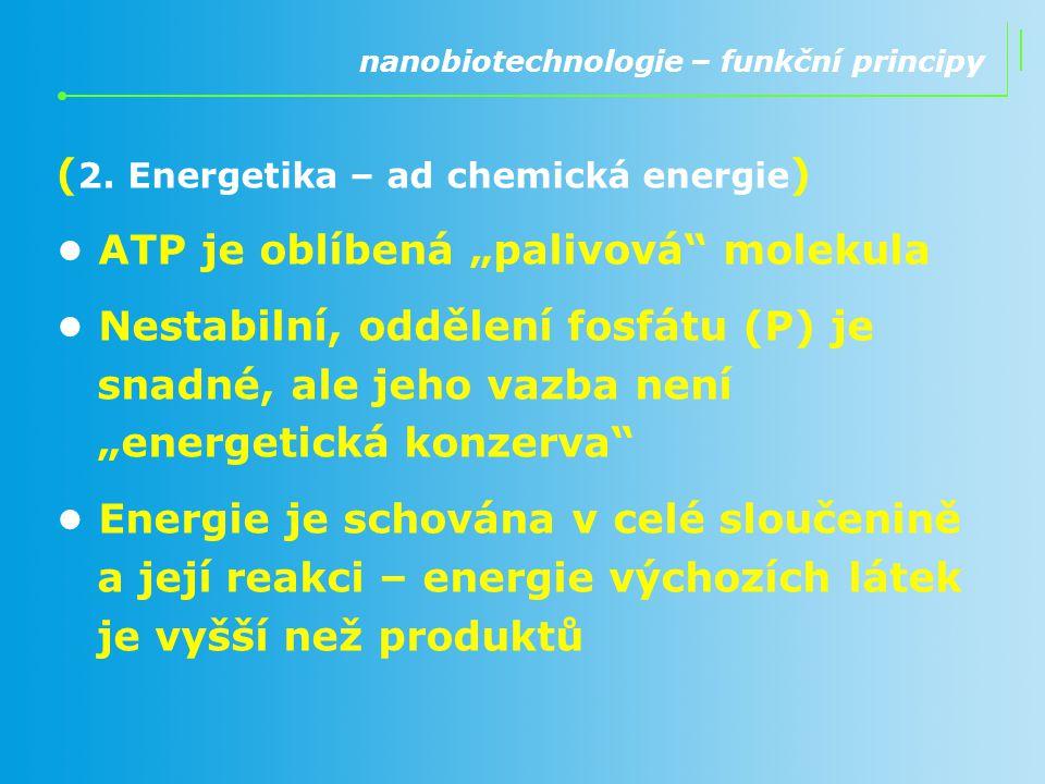 """( 2. Energetika – ad chemická energie ) ATP je oblíbená """"palivová"""" molekula Nestabilní, oddělení fosfátu (P) je snadné, ale jeho vazba není """"energetic"""