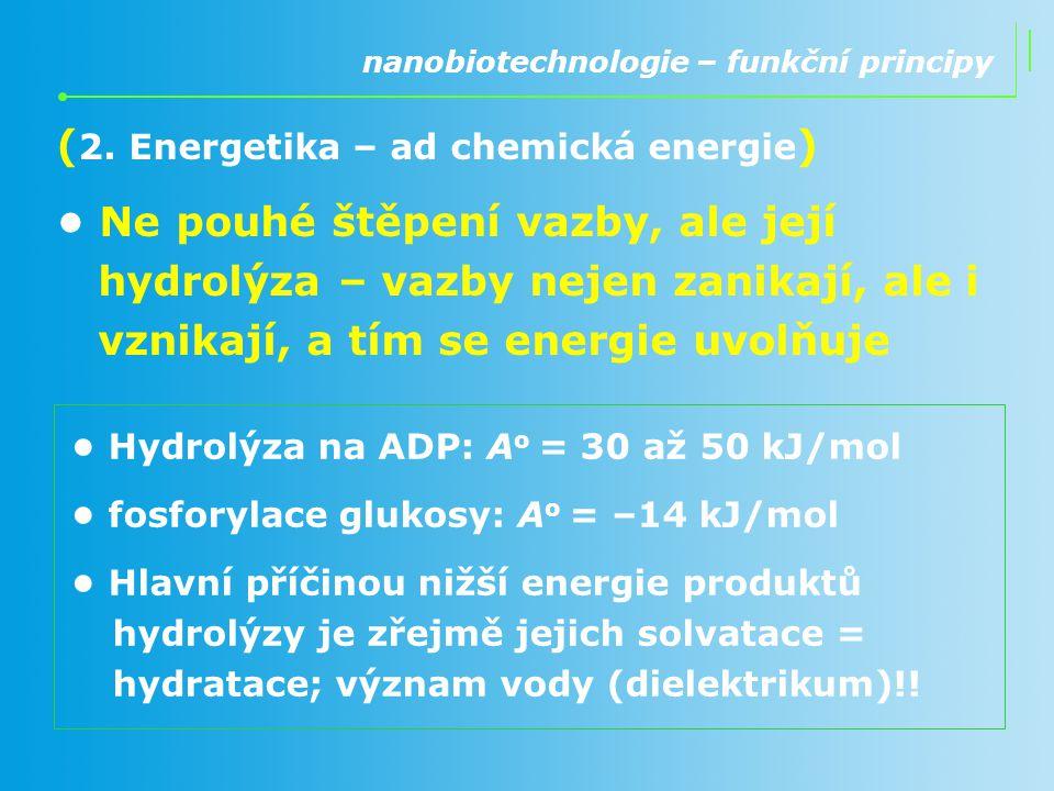 ( 2. Energetika – ad chemická energie ) Ne pouhé štěpení vazby, ale její hydrolýza – vazby nejen zanikají, ale i vznikají, a tím se energie uvolňuje n