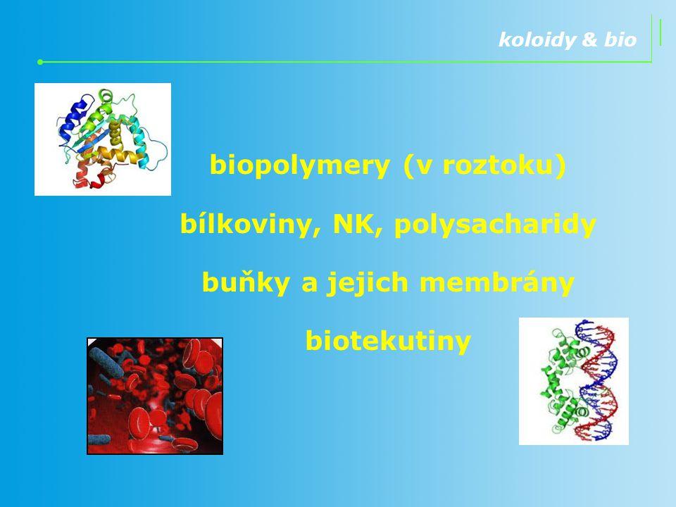 biopolymery (v roztoku) bílkoviny, NK, polysacharidy buňky a jejich membrány biotekutiny koloidy & bio