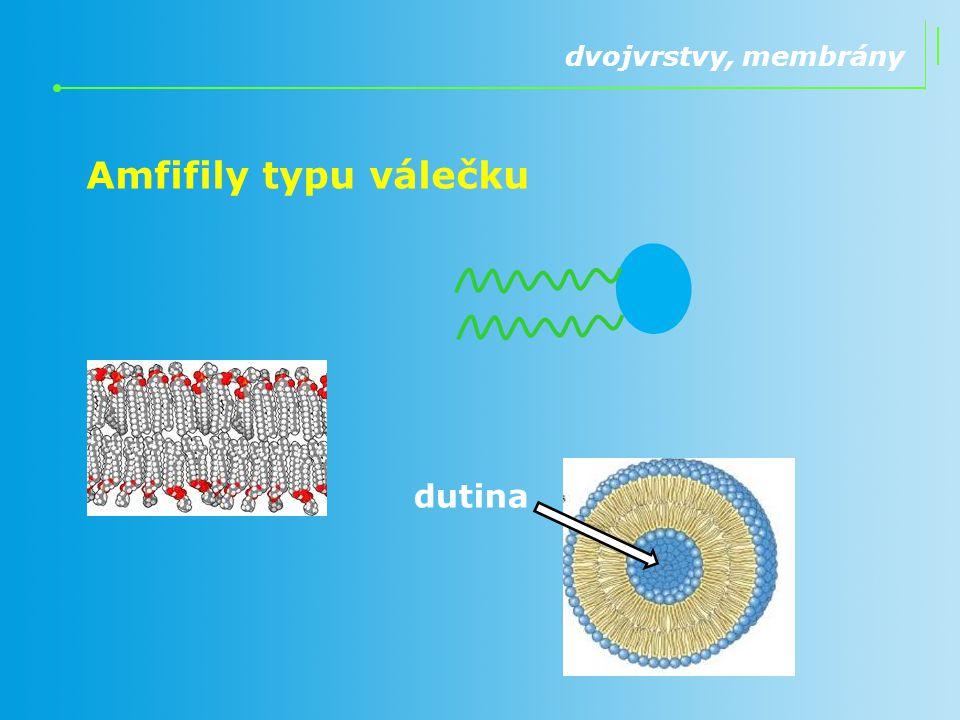 Amfifily typu válečku dvojvrstvy, membrány dutina