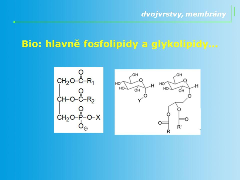 Bio: hlavně fosfolipidy a glykolipidy... dvojvrstvy, membrány