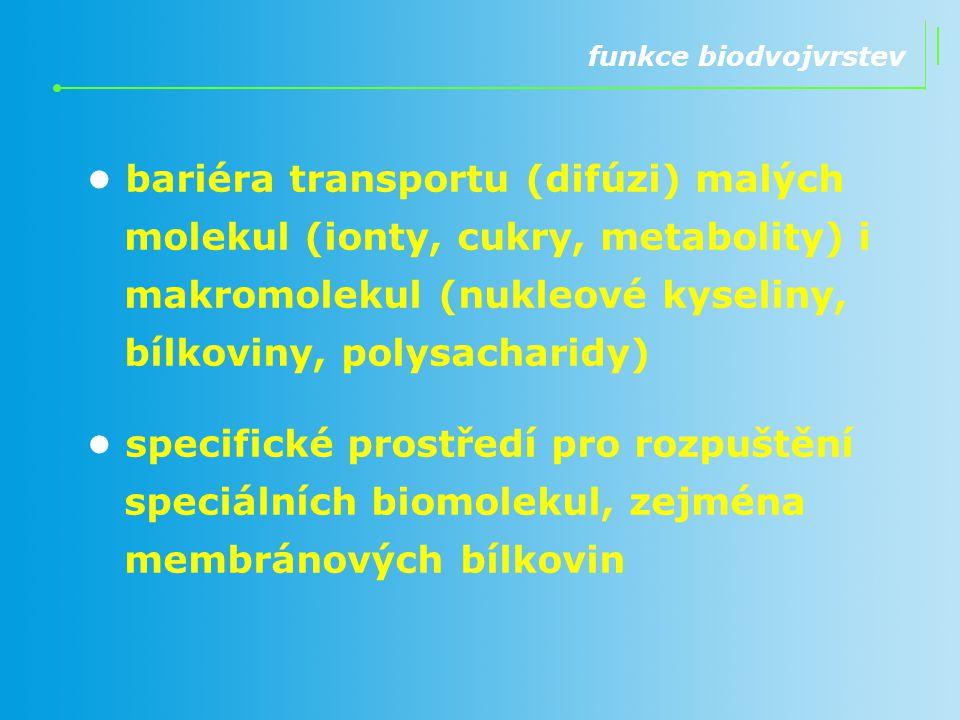 funkce biodvojvrstev bariéra transportu (difúzi) malých molekul (ionty, cukry, metabolity) i makromolekul (nukleové kyseliny, bílkoviny, polysacharidy