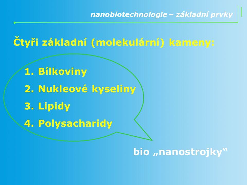 """Čtyři základní (molekulární) kameny: nanobiotechnologie – základní prvky 1.Bílkoviny 2.Nukleové kyseliny 3.Lipidy 4.Polysacharidy bio """"nanostrojky"""""""