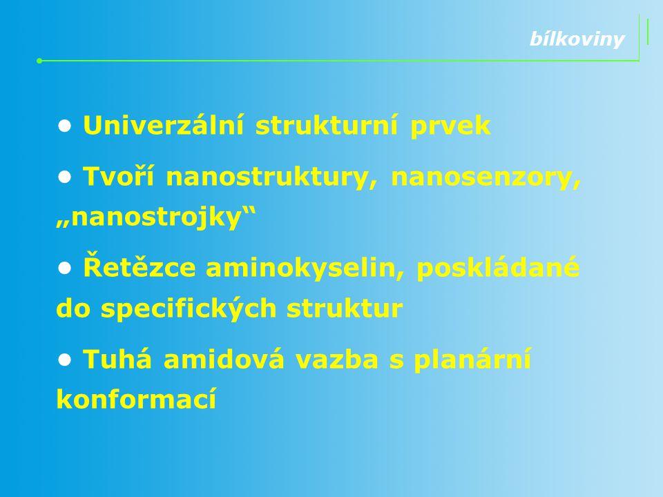 """Univerzální strukturní prvek Tvoří nanostruktury, nanosenzory, """"nanostrojky"""" Řetězce aminokyselin, poskládané do specifických struktur Tuhá amidová va"""