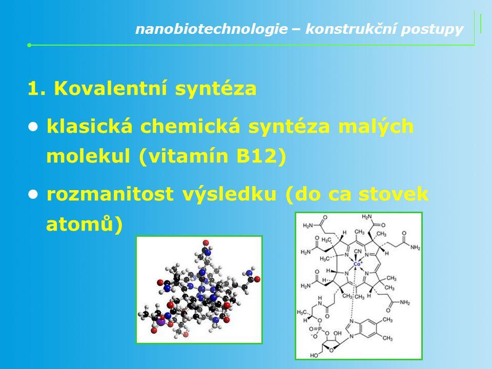 1. Kovalentní syntéza klasická chemická syntéza malých molekul (vitamín B12) rozmanitost výsledku (do ca stovek atomů) nanobiotechnologie – konstrukčn
