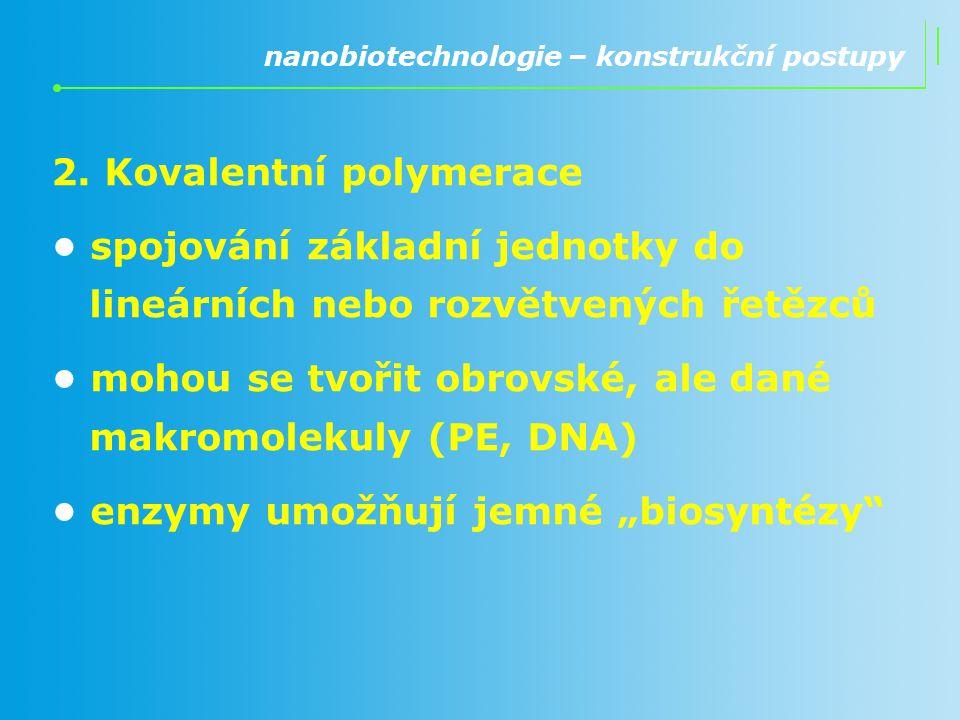 2. Kovalentní polymerace spojování základní jednotky do lineárních nebo rozvětvených řetězců mohou se tvořit obrovské, ale dané makromolekuly (PE, DNA