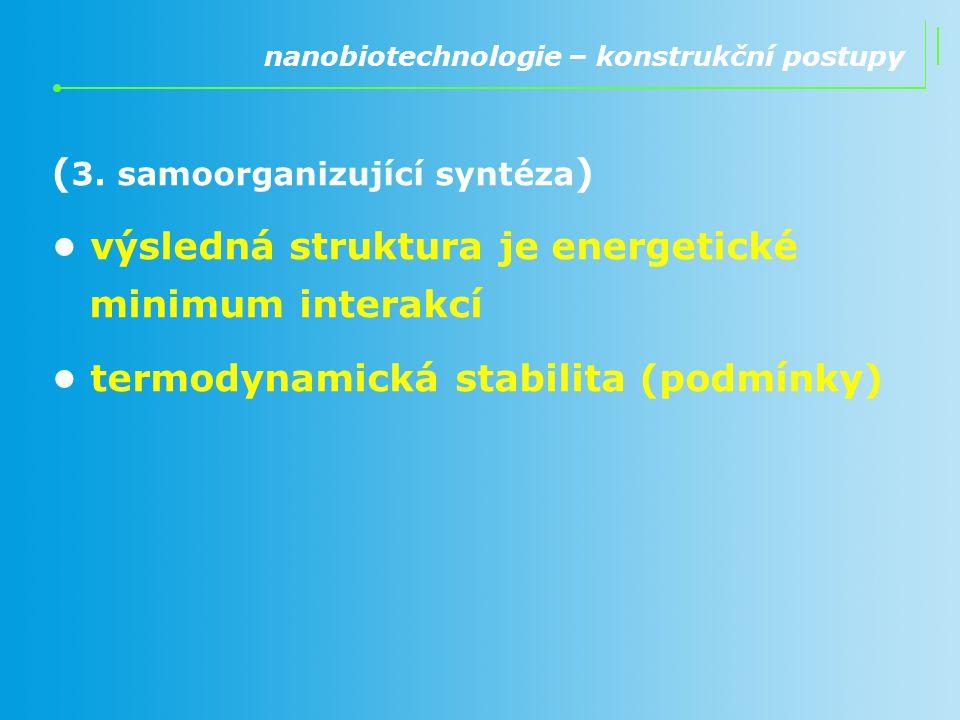 ( 3. samoorganizující syntéza ) výsledná struktura je energetické minimum interakcí termodynamická stabilita (podmínky) nanobiotechnologie – konstrukč