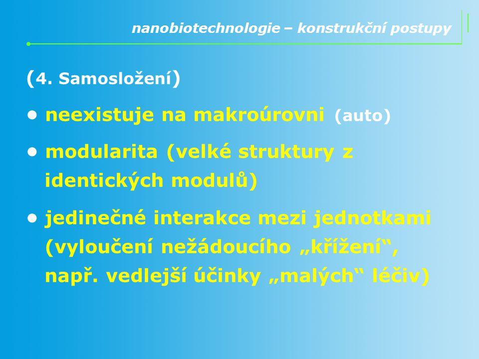 ( 4. Samosložení ) neexistuje na makroúrovni (auto) modularita (velké struktury z identických modulů) jedinečné interakce mezi jednotkami (vyloučení n