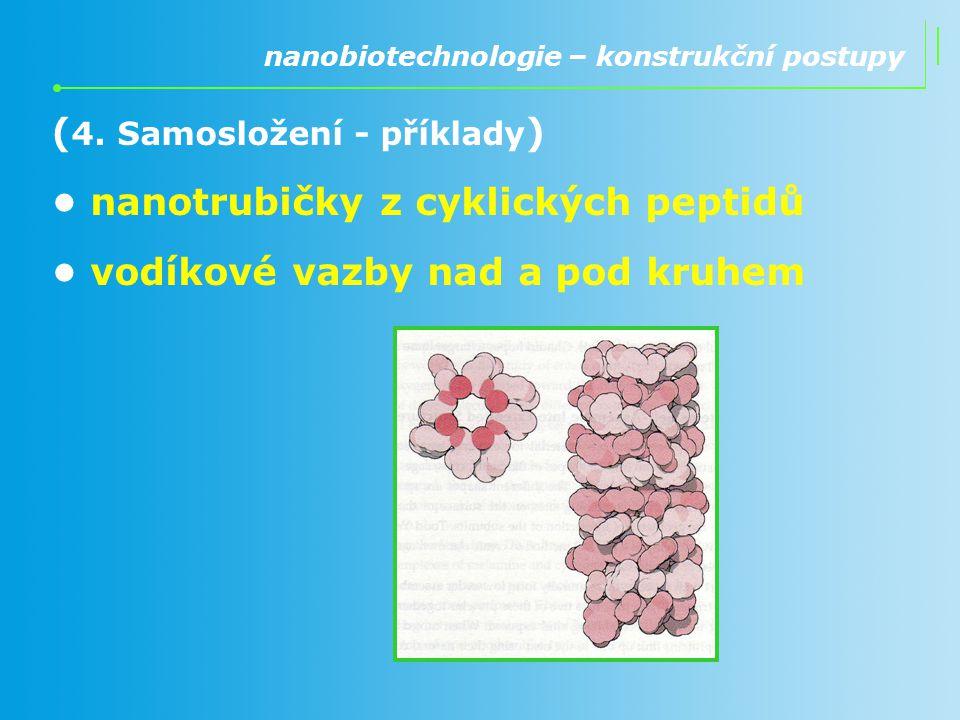 ( 4. Samosložení - příklady ) nanotrubičky z cyklických peptidů vodíkové vazby nad a pod kruhem nanobiotechnologie – konstrukční postupy