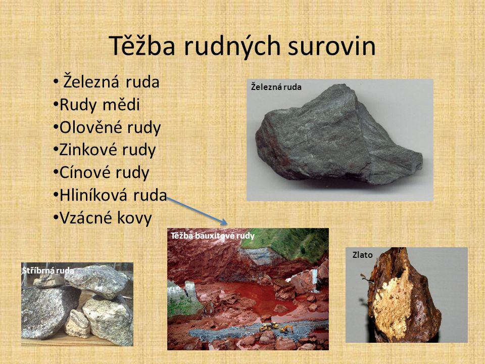 Těžba rudných surovin Železná ruda Rudy mědi Olověné rudy Zinkové rudy Cínové rudy Hliníková ruda Vzácné kovy Těžba bauxitové rudy Zlato Stříbrná ruda