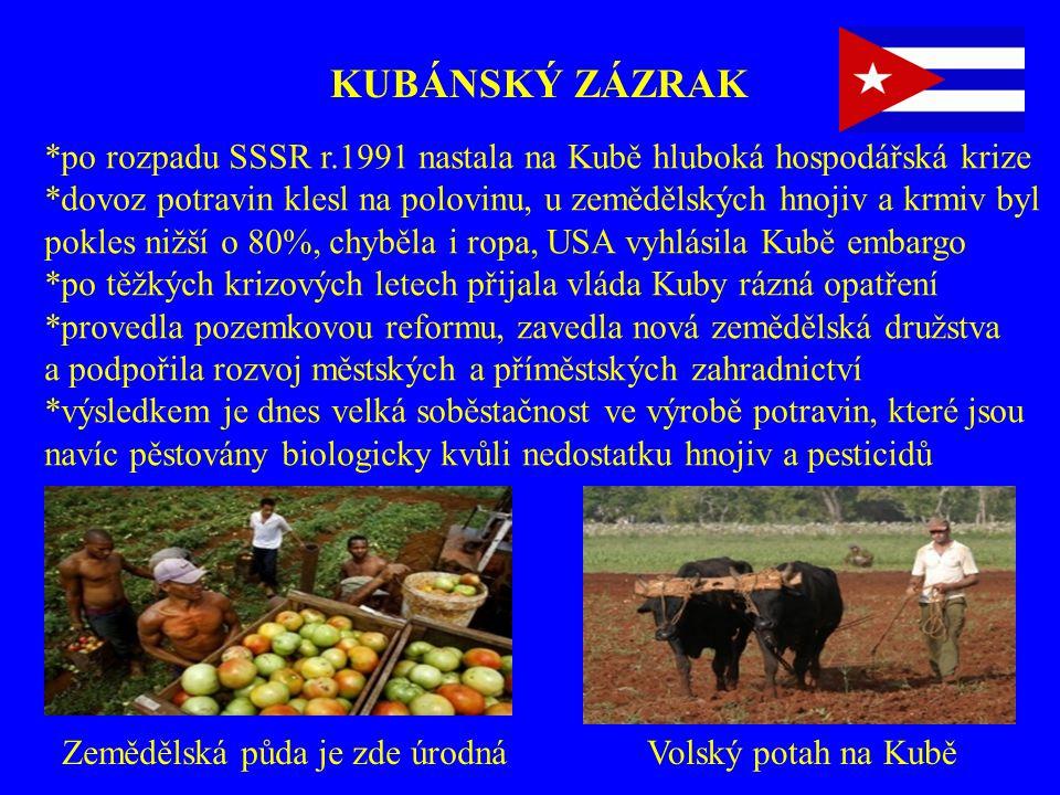 KUBÁNSKÝ ZÁZRAK Volský potah na KuběZemědělská půda je zde úrodná *po rozpadu SSSR r.1991 nastala na Kubě hluboká hospodářská krize *dovoz potravin kl