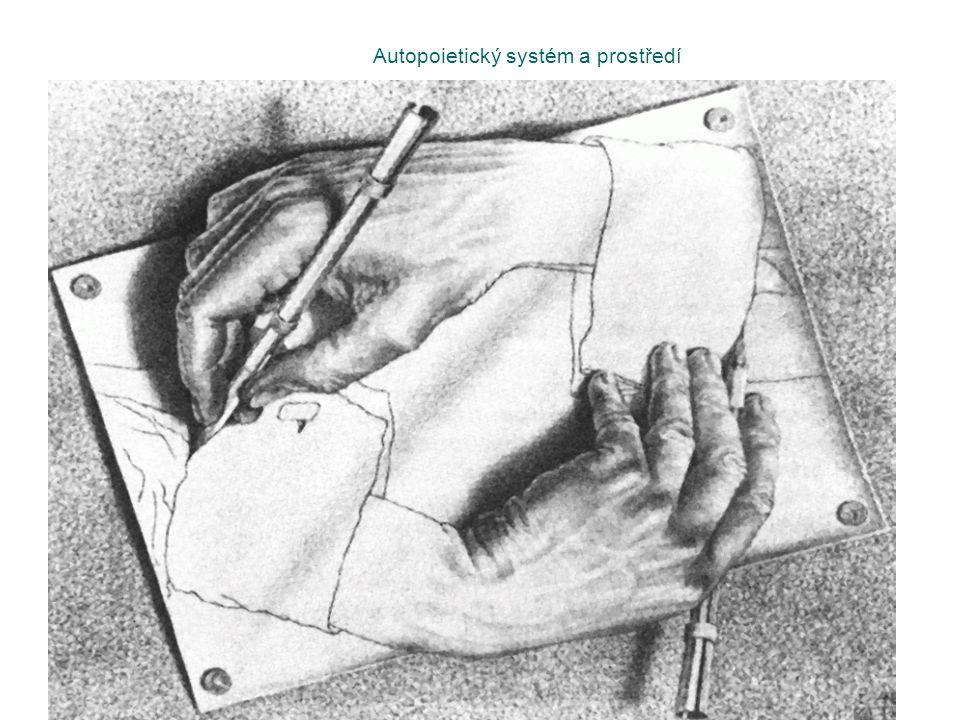 Autopoietický systém a prostředí