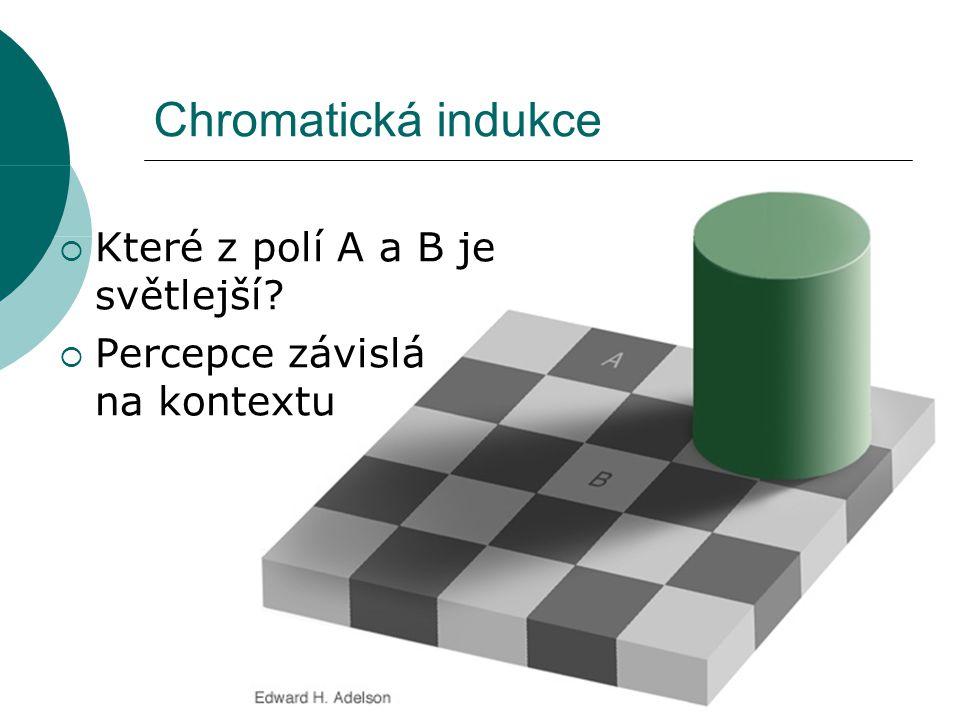 Chromatická indukce  Které z polí A a B je světlejší  Percepce závislá na kontextu