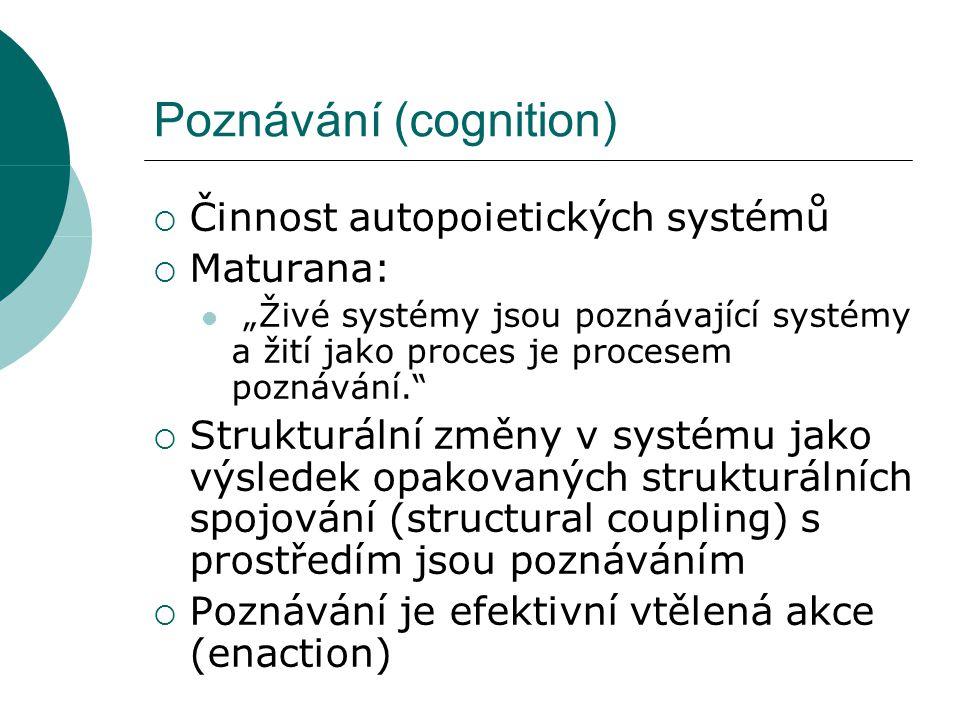 Celulární automat - model enaction