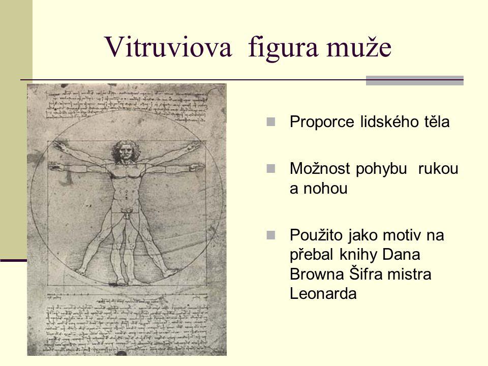 Vitruviova figura muže Proporce lidského těla Možnost pohybu rukou a nohou Použito jako motiv na přebal knihy Dana Browna Šifra mistra Leonarda