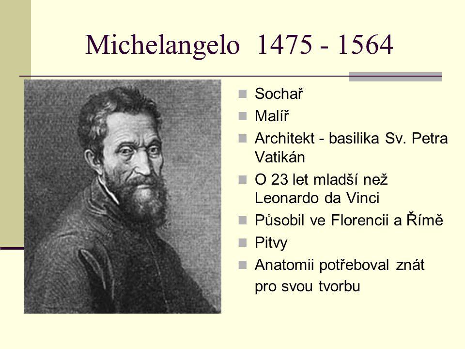 Michelangelo 1475 - 1564 Sochař Malíř Architekt - basilika Sv. Petra Vatikán O 23 let mladší než Leonardo da Vinci Působil ve Florencii a Římě Pitvy A