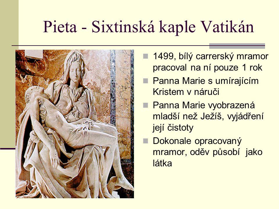 Pieta - Sixtinská kaple Vatikán 1499, bílý carrerský mramor pracoval na ní pouze 1 rok Panna Marie s umírajícím Kristem v náruči Panna Marie vyobrazen