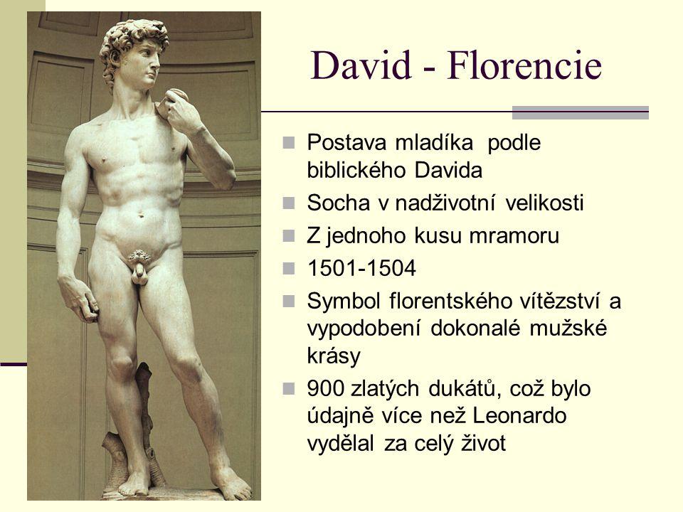 David - Florencie Postava mladíka podle biblického Davida Socha v nadživotní velikosti Z jednoho kusu mramoru 1501-1504 Symbol florentského vítězství