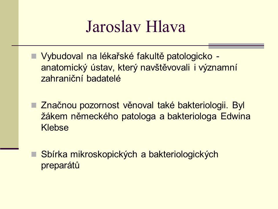 Jaroslav Hlava Vybudoval na lékařské fakultě patologicko - anatomický ústav, který navštěvovali i významní zahraniční badatelé Značnou pozornost věnov