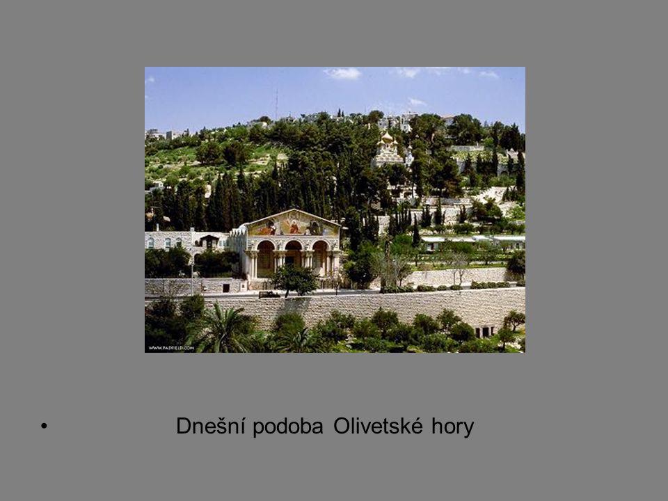 Dnešní podoba Olivetské hory