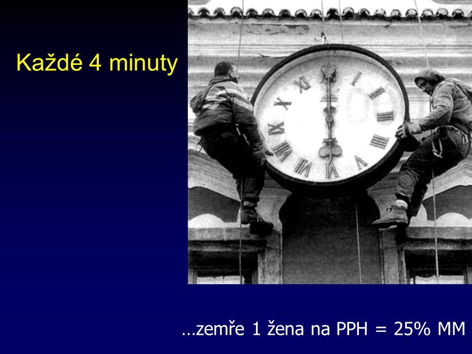 Každé 4 minuty …zemře 1 žena na PPH = 25% MM