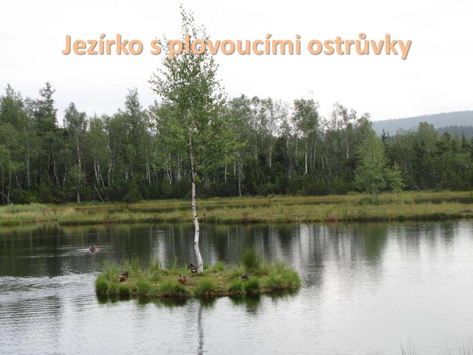 Další informace na http://regiony.ic.cz/tisk/jih.pdf Zdroje obrázků: Str.