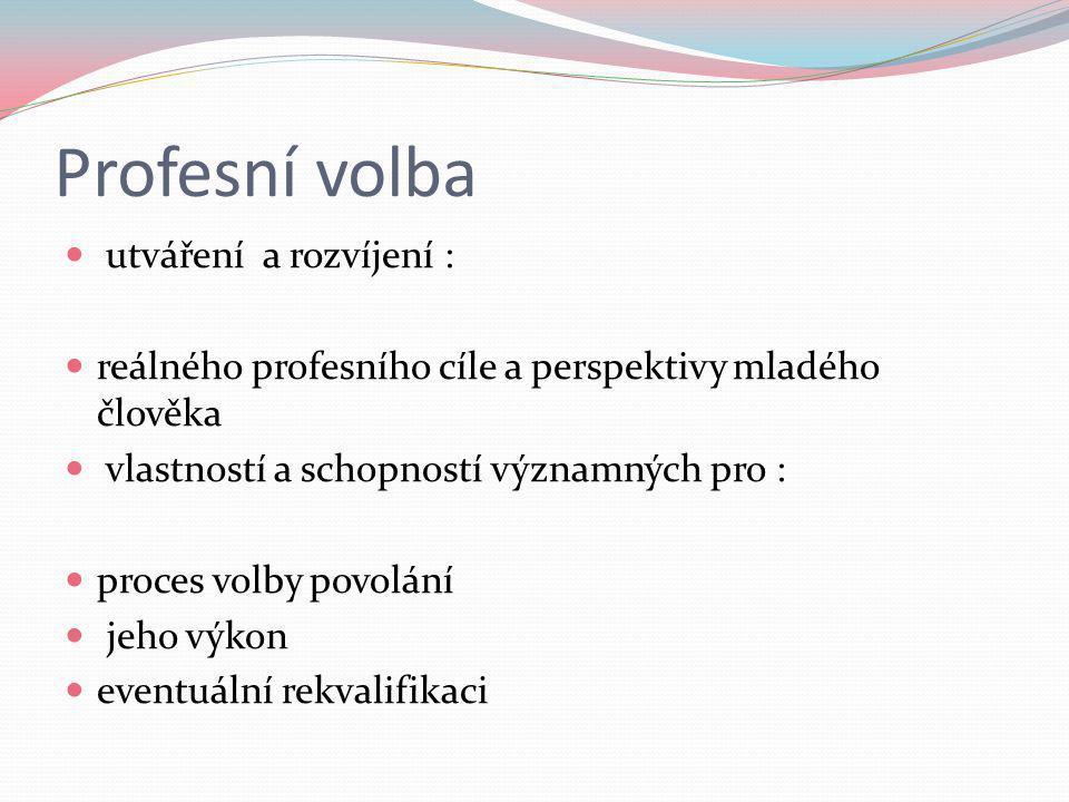 Profesní volba utváření a rozvíjení : reálného profesního cíle a perspektivy mladého člověka vlastností a schopností významných pro : proces volby pov