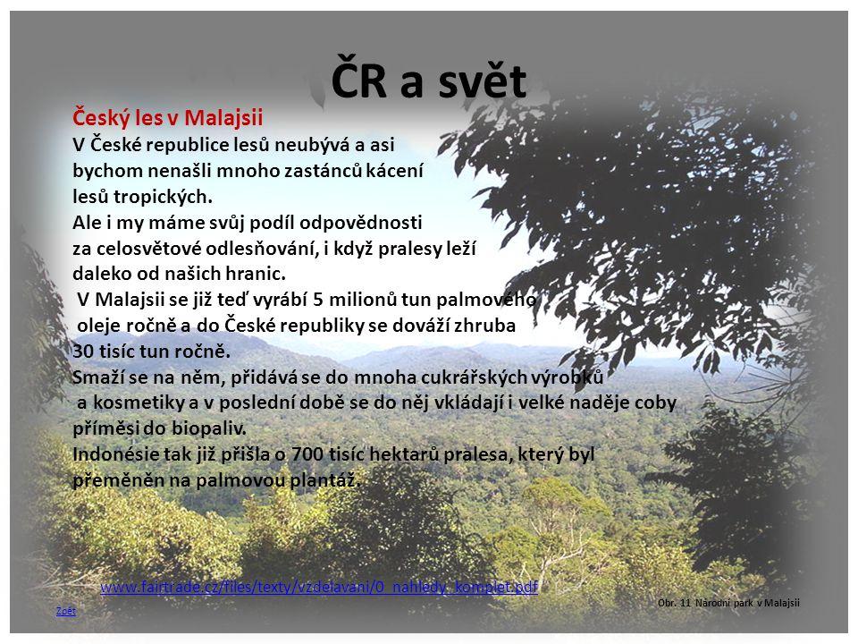 ČR a svět Český les v Malajsii V České republice lesů neubývá a asi bychom nenašli mnoho zastánců kácení lesů tropických. Ale i my máme svůj podíl odp