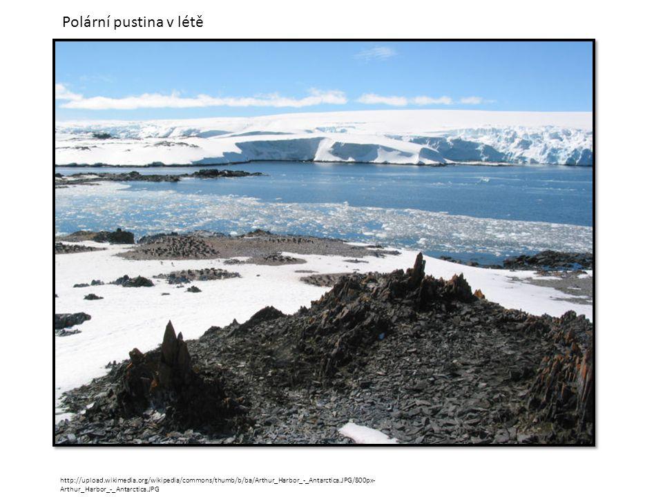 http://upload.wikimedia.org/wikipedia/commons/thumb/b/ba/Arthur_Harbor_-_Antarctica.JPG/800px- Arthur_Harbor_-_Antarctica.JPG Polární pustina v létě