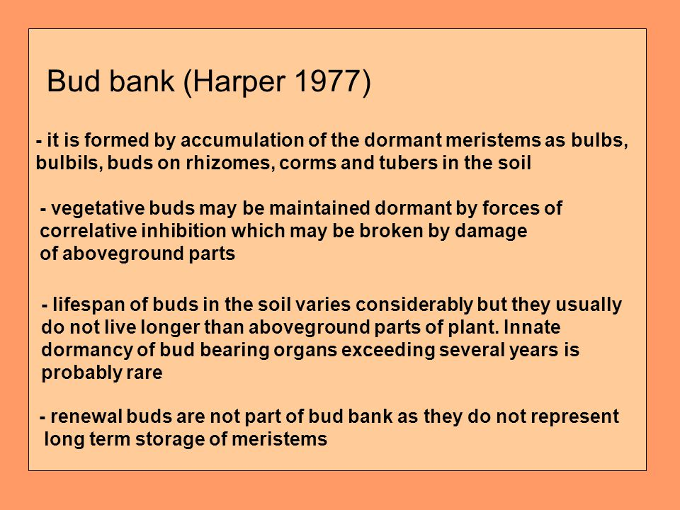 Bud bank (Harper 1977) - it is formed by accumulation of the dormant meristems as bulbs, bulbils, buds on rhizomes, corms and tubers in the soil - vegetative buds may be maintained dormant by forces of correlative inhibition which may be broken by damage of aboveground parts - lifespan of buds in the soil varies considerably but they usually do not live longer than aboveground parts of plant.